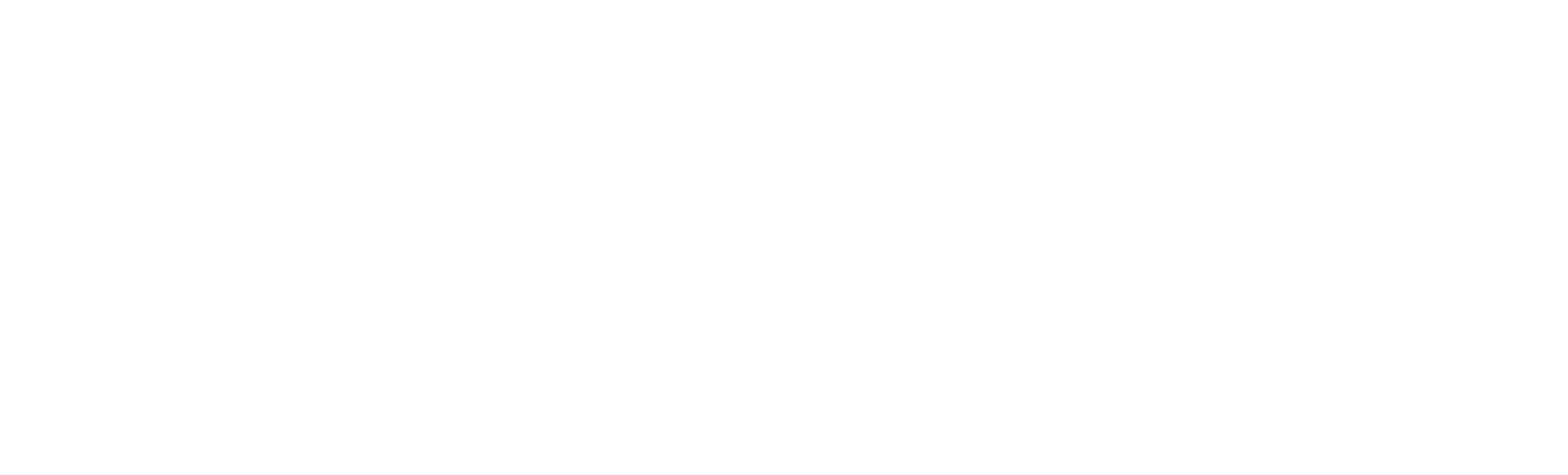 Velocity Aviation Logo light 2020